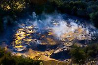 Boiling mud pools, Te Puia (New Zealand Maori Arts & Crafts Institute), Whakarewarewa Thermal Valley, Rotorua, North Island, New Zealand.
