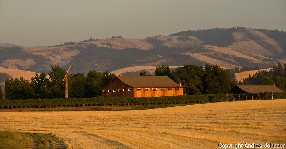Walla Walla Vitners, Walla Walla, Washington