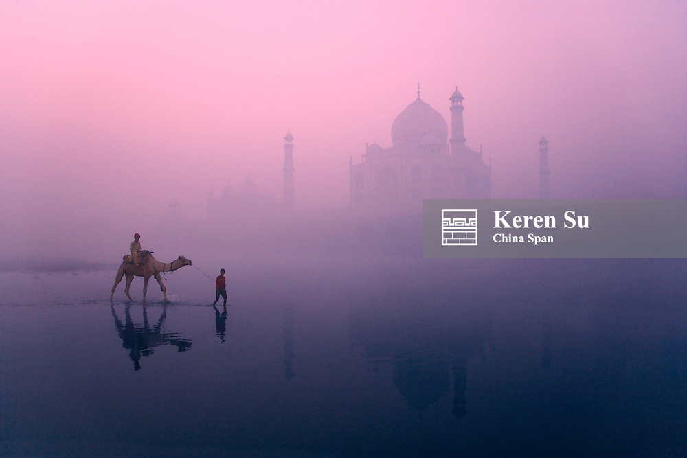 Boy with camel in the moat of Taj Mahal in morning mist, Agra, India