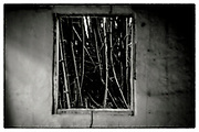 """An interior view from within an abandoned Monk's meditation hut set within a dense bamboo forest, in the grounds of the Pha Koeng Buddhist temple, Chaiyaphum Province, Northeast Thailand, 2016. From the series: Pha Koeng"""" (2011-2017)."""