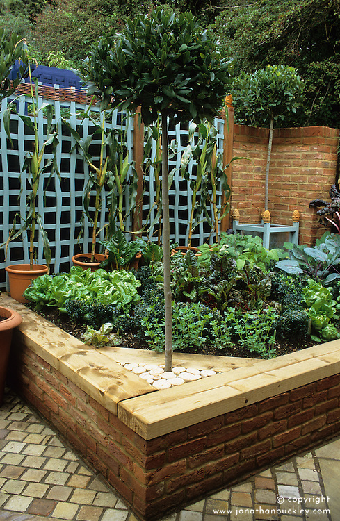Brick raised bed topped with sleepers in the vegetable area. Standard bay trees.