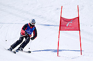 Polish athlete Patryk Czaplicki while Alpine Intermediate Super Gigant during 2013 Special Olympics World Winter Games PyeongChang at Yongpyong Resort on February 2, 2013...South Korea, PyeongChang, February 2, 2013..Picture also available in RAW (NEF) or TIFF format on special request...For editorial use only. Any commercial or promotional use requires permission...Photo by © Adam Nurkiewicz / Mediasport