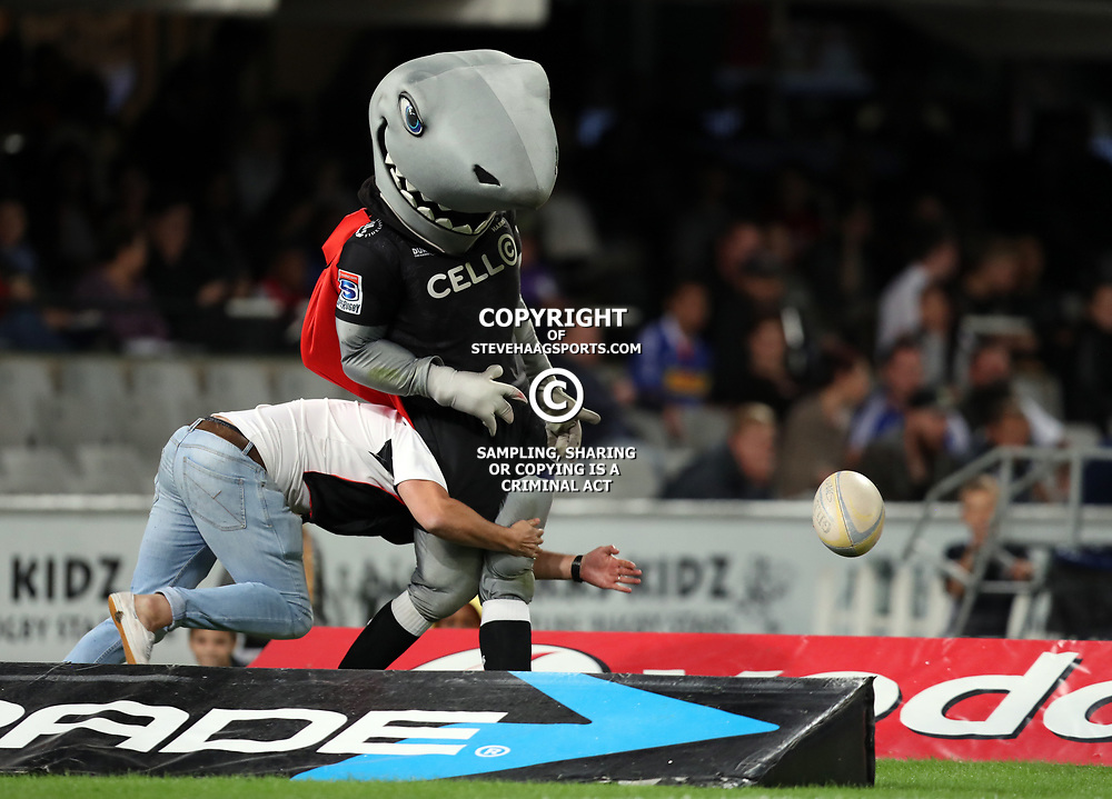 DURBAN, SOUTH AFRICA - MAY 27: A fan gets onto the pitch and tackles sharky  during the Super Rugby match between Cell C Sharks and DHL Stormers at Growthpoint Kings Park on May 27, 2017 in Durban, South Africa. (Photo by Steve Haag/Gallo Images)