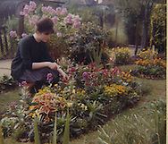 Irene Ottaway in her prefab garden, a UK100 in Queens Park, London, in the late 60s