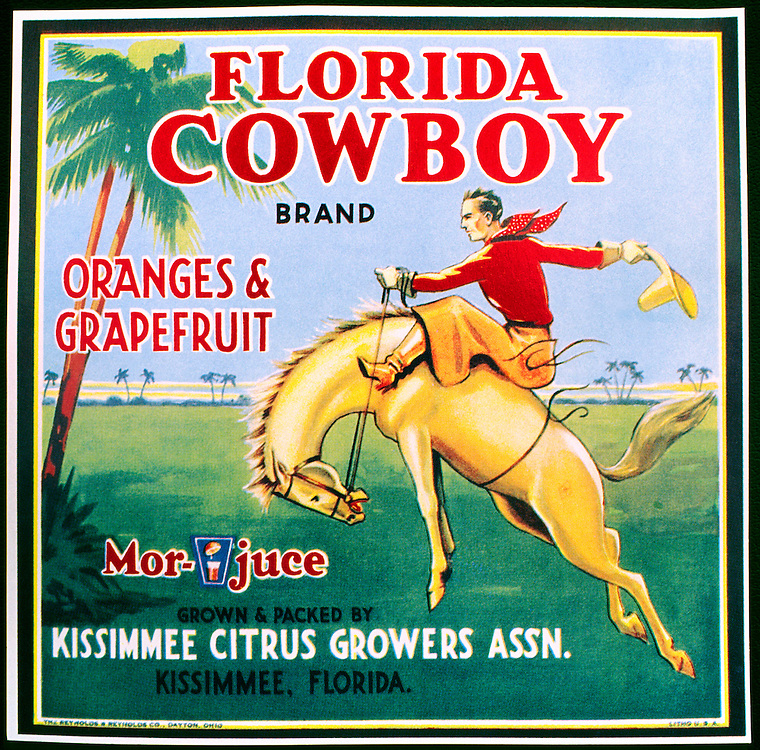 Vintage old antique citrus fruit orange box crate label from Kissimmee, Florida, USA. Florida Cowboy brand