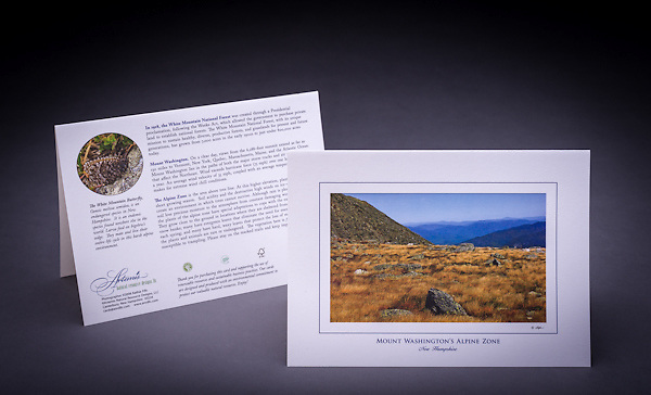 A scenice view from the Alpine Garden on top of NH's largest peak.  Mount Washington is home to several rare and endangered species, including the White Mountain Butterfly which is featured on the back of the card. <br /> <br /> Artemis Photo Greeting Cards featuring NH native flora and fauna and historic sites. The cards are made exclusively in NH made from 100% FSC recycled paper, manufactured with wind and water power, and are archival acid free paper. Each card includes details on the back about the image, including interesting anecdotes, historic facts, conservation status, and recipes.