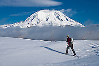 A cross country skier skies to a vista to see Mount Rainier in winter from the SW across the Glacier View Wilderness from the Mount Tahoma Trails Hut-to-Hut cross country ski system. Cascade Mountain Range, Washington, USA