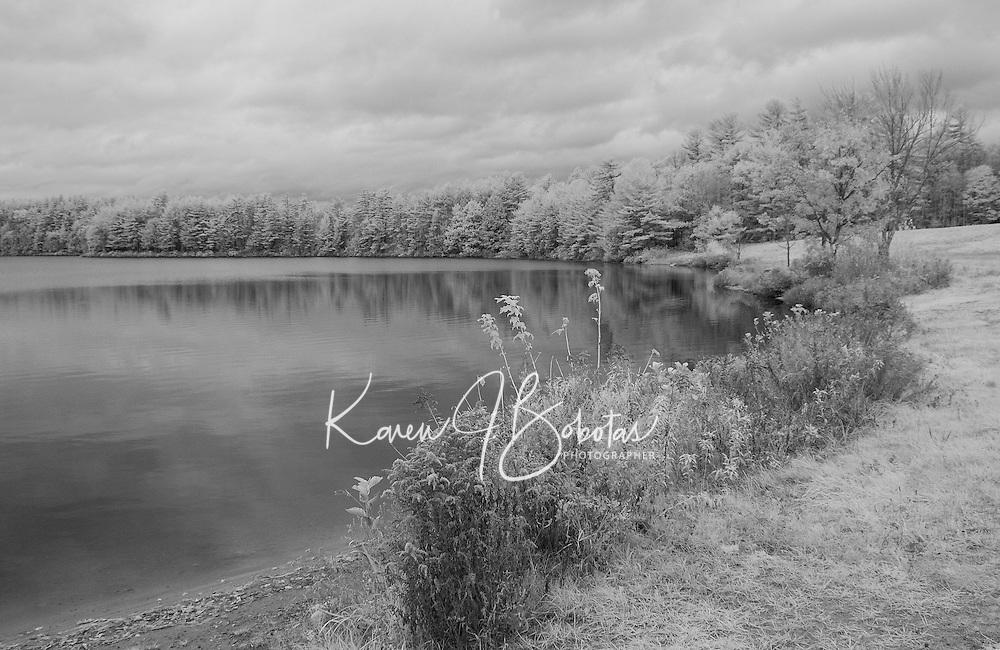 Infrared at Saltmarsh Pond.  ©2015 Karen Bobotas Photographer