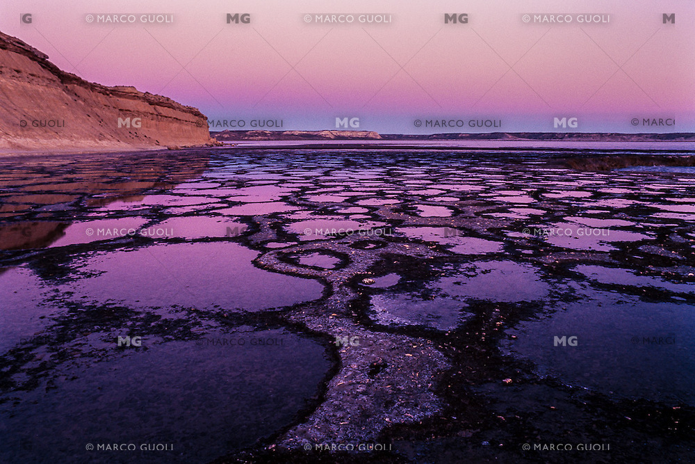 PUNTA PARDELAS, PENINSULA VALDES, PROVINCIA DEL CHUBUT, ARGENTINA(PHOTO BY © MARCO GUOLI - ALL RIGHTS RESERVED. CONTACT THE AUTHOR FOR ANY KIND OF IMAGE REPRODUCTION)
