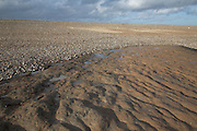 Low tide exposes rippled London Clay along the Suffolk coast between Dunwich and Walberswick. In places wooden posts suggest remnants of the lost town and port of Dunwich. Suffolk, England