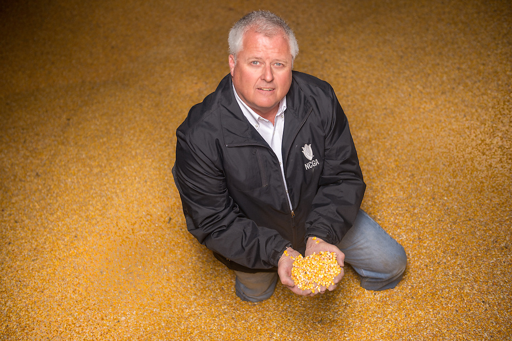 Farmer holding corn kernels in his hands on a farm in Maryland
