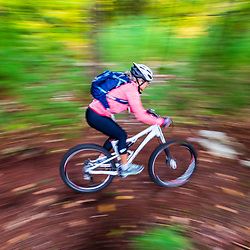 A woman mountain biking in the Raymond Community Forest in Raymond, Maine. Fall.