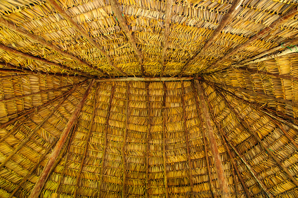 Thatch roof interior detail; Quechua village, Yasuni National Park, Amazon, Ecuador