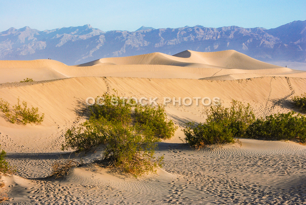 The Eureka Valley Sand Dunes