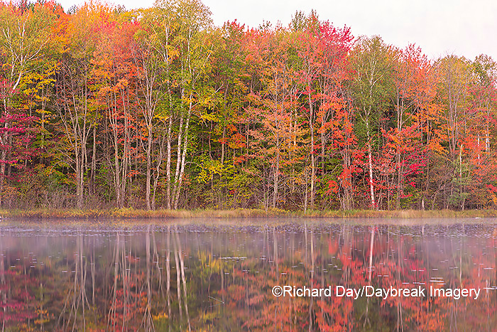 64776-02010 Thornton Lake in fall color Alger Co.  MI