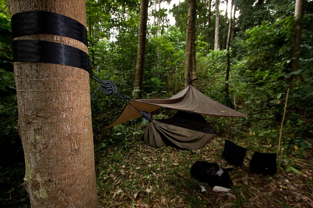 Hennessy hammock in Mt Tompotika, Central Sulawesi