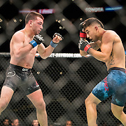 Alex Perez (blue trunks) defeated Jose Torres (black trunks) by knockout in a flyweight bout at UFC 227 held at the Staples Center in Los Angeles on August 4, 2018. Photo by Todd Bigelow for ESPN.