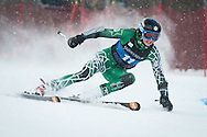 during the University of Vermont ski carnival at Stowe Mountain Resort on Saturday January 24, 2015 in Stowe, Vermont.  (BRIAN JENKINS, for the Free Press)