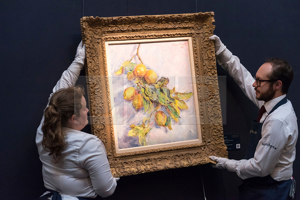 © Licensed to London News Pictures. 14/06/2018. LONDON, UK. ''Citrons Sur Une Branche'' by Claude Monet, (Est. £2,500,000 - 3,500,000). Preview of Impressionist & Modern and Contemporary art sales, which will take place at Sotheby's New Bond Street on 19 and 26 June 2018 respectively.  Photo credit: Stephen Chung/LNP