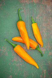 Chilli 'Bulgarian Carrot'