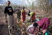 A man holds up a mass of plastic bags retrieved from the stomach of a pregnant cow that became critically bloated and had to be slaughtered in a village near Narouk, Kenya. (From the book What I Eat: Around the World in 80 Diets.) In the dry, near desert conditions of drought stricken Kenya, discarded plastic bags are eaten by cows while grazing. Maasai wealth is derived from the cattle owned, the land, and the number of children born to support the family busines, which is cattle and goats.