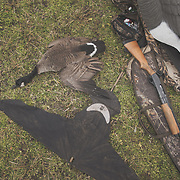 Michgian waterfowl hunters.