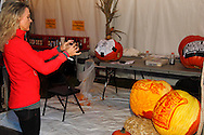 Visitor takes a picture of the freshly carved pumpkins during the Preview Party for the 41st annual Oktoberfest at the Dayton Art Institute, Friday, September 21, 2012.