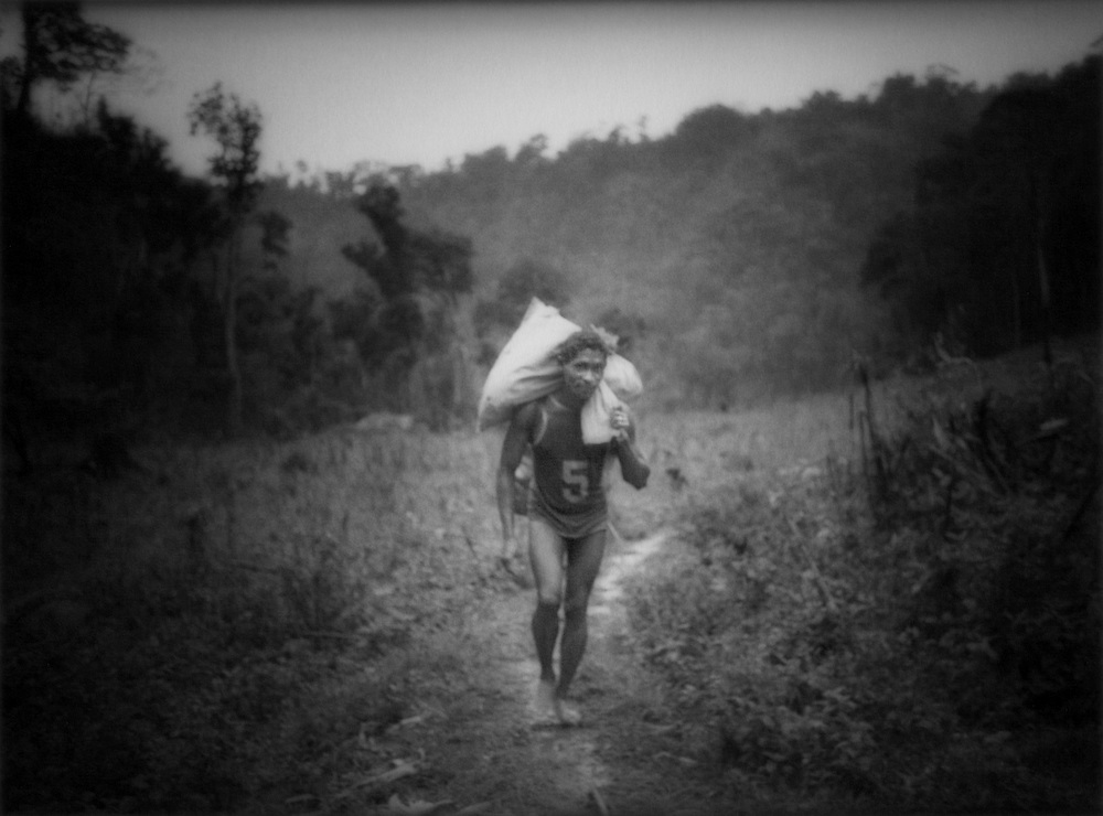 Agta Negrito man carries swidden harvest of corn, Sierra Madre Mountains, Luzon, Philippines.
