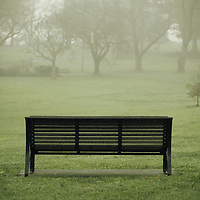 A park bench in winter