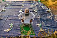 Ramadan ai tempi del Covid 19