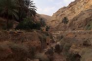 st Georges monastery in wadi kel   jericho  Israel    jericho  Israel     ///  Le monastère saint Georges Wadi Kelt , où vivent cinq moines grecs. Même les oiseaux ne veulent pas partir d'ici dit-on  jericho  Israel   ///     L931006a  /  R00061  /  P116501
