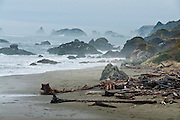 The Pacific Ocean carves sea stacks from coastal cliffs at Harris Beach State Park, on US Highway 101, north of Brookings, Curry County, Oregon, USA.