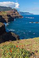 Ponta de Sao Louren&ccedil;o, Cani&ccedil;al<br /> Foto Gregorio Cunha