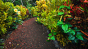 The Galaxy Garden, Paleaku Gardens Peace Sanctuary, Kona Coast, The Big Island, Hawaii USA
