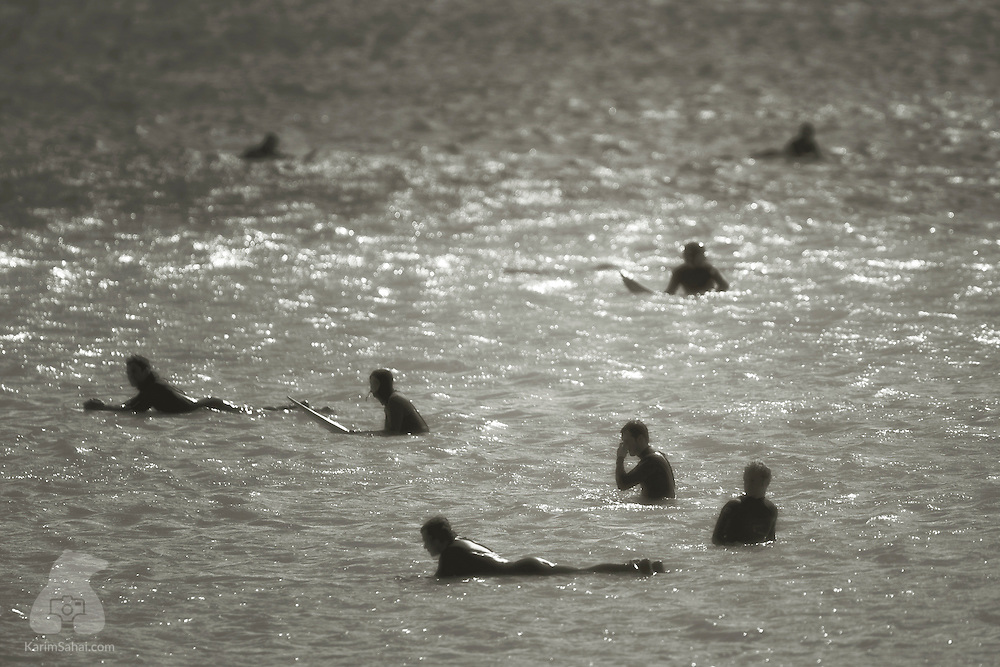 Surfers float inthe water while waiting for the next wave; Lyall Bay, Wellington, New Zealand.