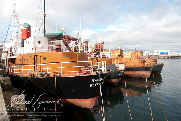 Boats that where once used for whaling sit dry docked in Reykjavik, Iceland.