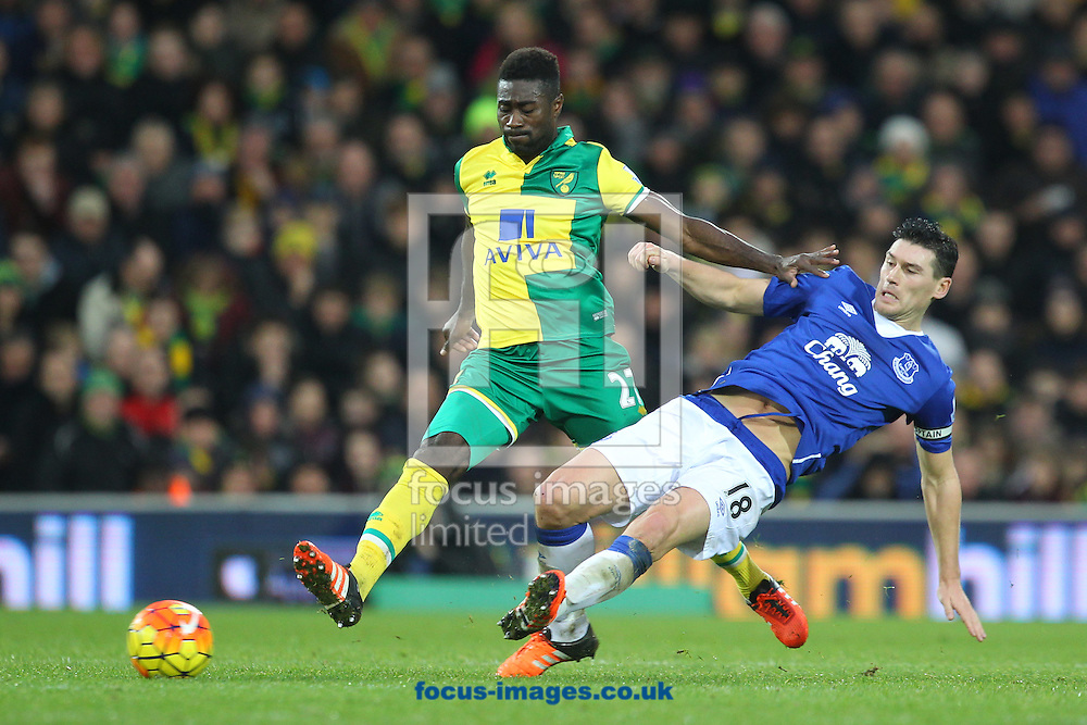 Gareth Barry of Everton and Alexander Tettey of Norwich in action during the Barclays Premier League match at Carrow Road, Norwich<br /> Picture by Paul Chesterton/Focus Images Ltd +44 7904 640267<br /> 12/12/2015