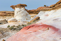 Colorful sandstone rocks and slickrock, White Rocks Hoodoos, Grand Staircase Escalante National Monument Utah