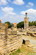 RABAT, MOROCCO - 27th May 2014 - Old Mosque and minaret standing amid ruined architecture at the Chellah Gardens, Rabat, Morocco.