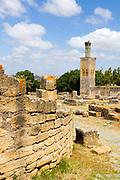 Chellah Gardens, Rabat, Morocco, 2014-05-27.