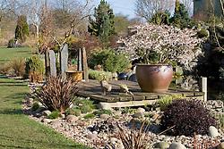 A sunny spring day in John Massey's garden with Prunus incisa 'Kojo-no-mai' flowering in a large pot on the deck by the pond at Ashwood Nurseries. Decorative duck ornaments and slate pillars