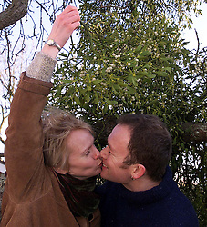 Lisa and Toby Buckland from Eltisley, Cambridgeshire, in their back garden with their mistletoe tree, December 12, 2000..Photo by Andrew Parsons/i-Images..