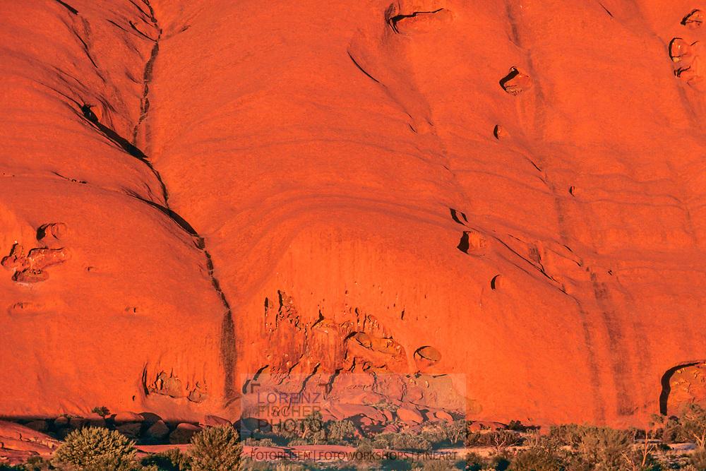 Felswand mit H&ouml;hlen im Abendlicht, Uluru, Ausgtralien<br /> <br /> Rock face with caves, Uluru, Australia