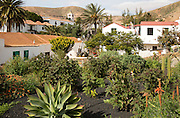 Historic village and church tower Iglesia de Santa Maria, Betancuria, Fuerteventura, Canary Islands, Spain