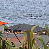 South Coast Board Riders Members and friends paddle out to sea in tribute for victims of Christchurch terror attack.<br /> 2pm, 23 March 2019, St Clair Beach, Dunedin,