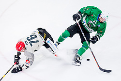 Nik Pem of HDD Jesenice and Gregor Kobler of HK SZ Olimpija during Ice Hockey match between HK SZ Olimpija Ljubljana and HDD Jesenice in Round #24 of Alps Hockey League, on December 22, 2018 in Hala Tivoli, Ljubljana, Slovenia. Photo by Ziga Zupan / Sportida