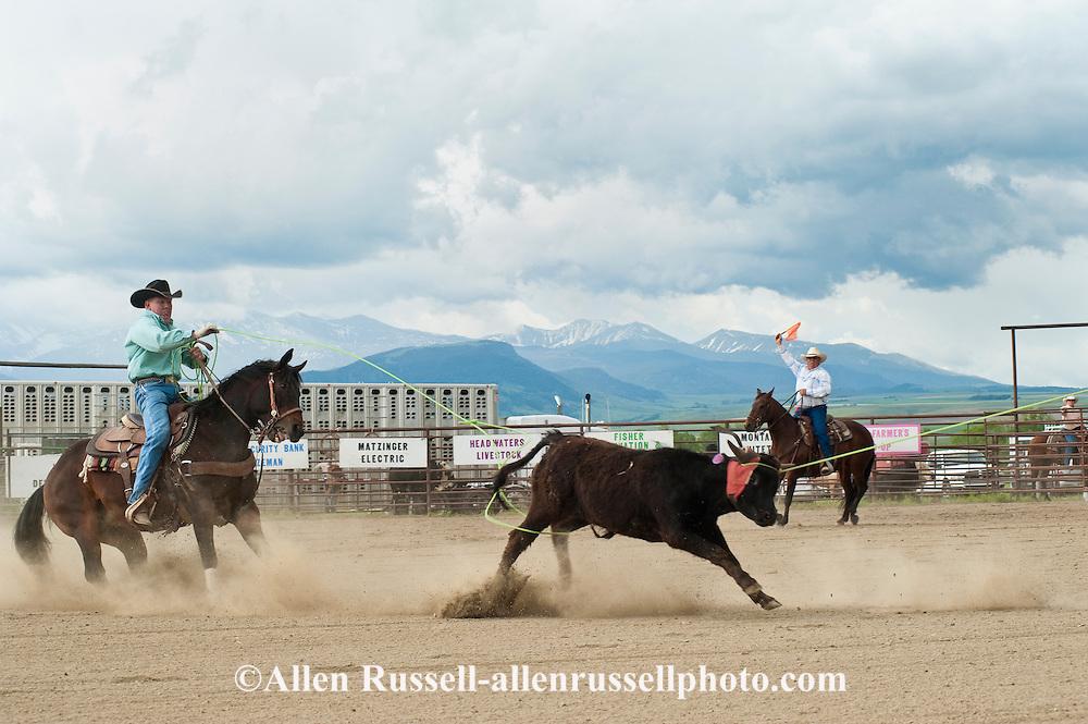 Team Roping, Wilsall Rodeo, Montana, heeler Joe Winter makes heel catch, Crazy Mountains, <br /> MODEL RELEASED, PROPERTY RELEASED on heeler &amp; horse only