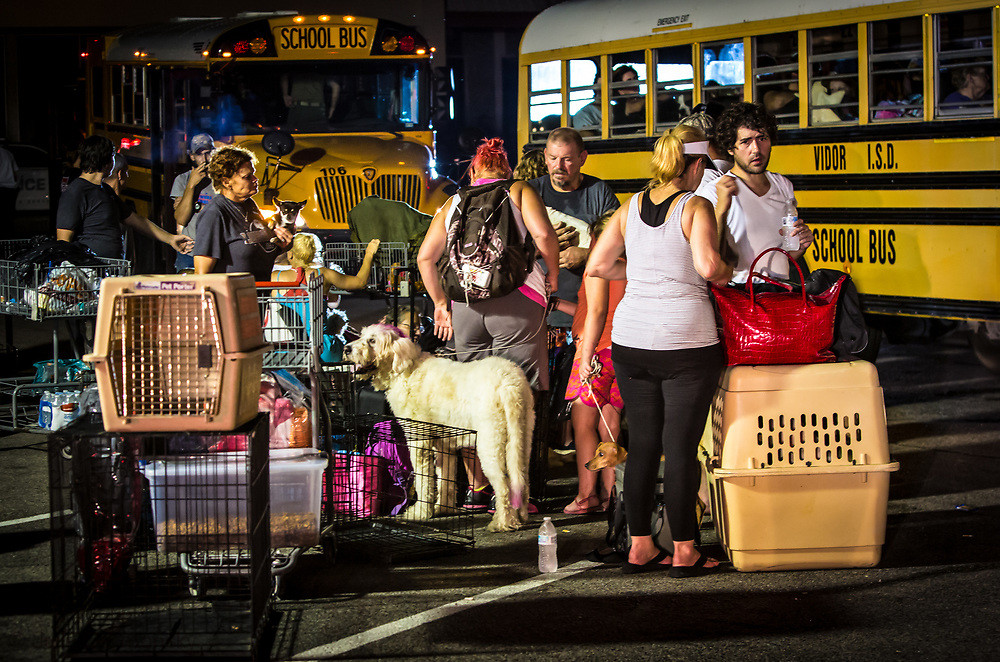 Vidor, Texas, August 30, 2017- evacuations continue in Vidor, Texas as water continued to rise, despite Hurricane Harvey's rain stopping. After being evacuated from thier homes people and animals are dropped off in the parking lot of a stripmall in VIdor before being taken by school bus to a shelter in Lake Charles, Louisiana.