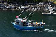 The Welbury Bay Too crab boat alongside the Salish Eagle Ferry in Long Harbour at Salt Spring Island, British Columbia, Canada.
