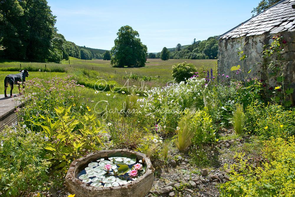 The Office Garden at Alton Albany Farm B&B, Barr, Ayrshire, Scotland